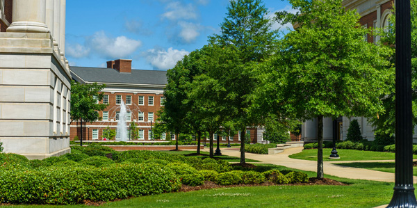 View of the Engineering Quad with trees on a sunny day.